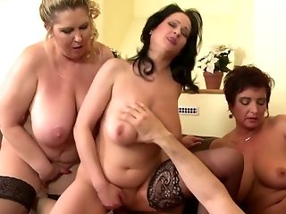 Lucky Boy Collective Inbetween Trio Big-boobed Mothers