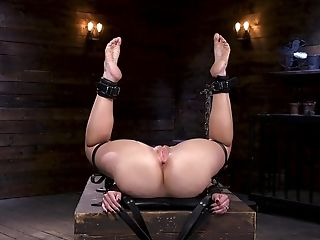 Super-cute Blondie Lisey Sweet Anal Invasion Manhandled With Playthings In Restraint Bondage